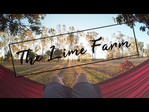 A DAY AT THE LIME FARM IN AUSTRALIA | GoPro