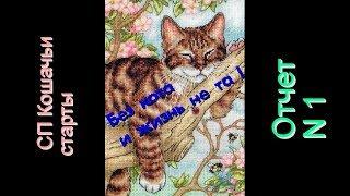 Вышивка крестиком/Без кота и жизнь не та!/Отчёт 1/СП Кошачьи старты 🐱Napping kittin 65090
