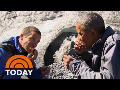 Obama Eats Salmon Gnawed On By An Actual Bear With Bear Grylls | TODAY
