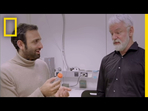 The Search for a Genetic Disease Cure | Explorer
