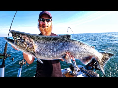 Catch, Clean, Cook Lake Ontario Monster Salmon! (my Biggest Fish Landed)
