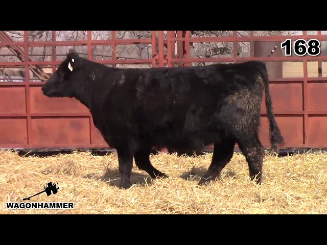 Wagonhammer Ranches Lot 168