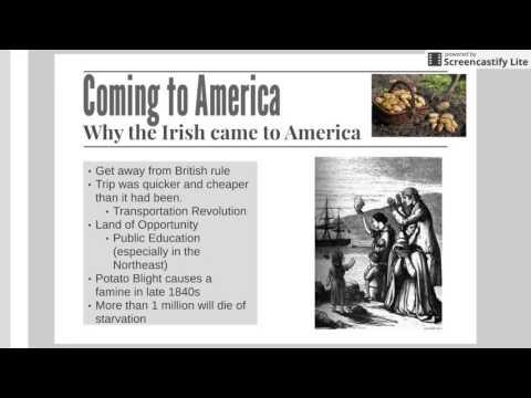 Technology Transforms America Notes 3: Irish Immigration