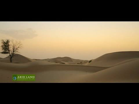ARID LAND Development Co. Corporate film by Mithra ad gallery.