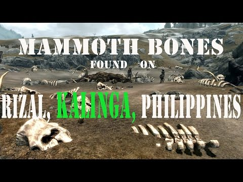 Bones of Pygmy Mammoth and Stegodon Found on Rizal Kalinga Philippines