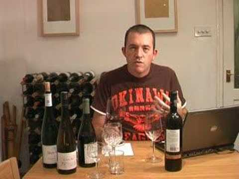 Learn About Wine: An Introduction To Wine Tasting