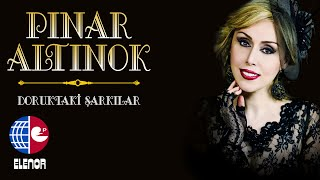 Gambar cover PINAR ALTINOK-BİTMEYEN ÇİLE
