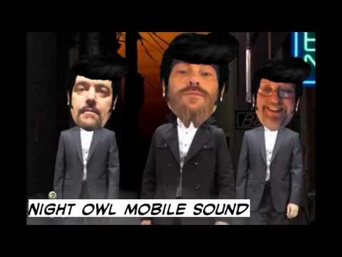 Night Owl Mobile Sound Elko Nv.