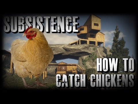 Subsistence HOW TO CATCH CHICKENS Tips and Tricks New Open World Survival Game