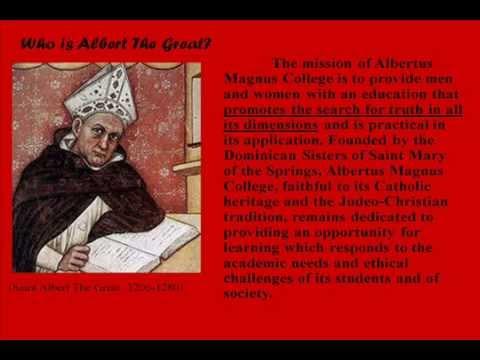 What Makes an Albertus Magnus College Student