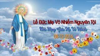 (08-12-2016) Lễ Đức Mẹ Vô Nhiễm Nguyên Tội - Bổn Mạng Giáo Họ Vô Nhiễm