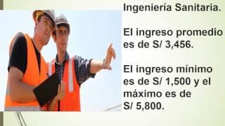 Las profesiones universitarias mejor pagadas en Peru