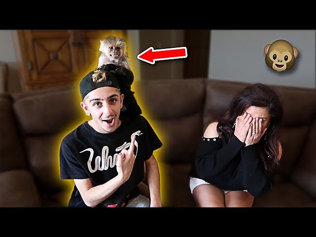 BUYING MY MOM A PET MONKEY FOR HER BIRTHDAY!! (EMOTIONAL)