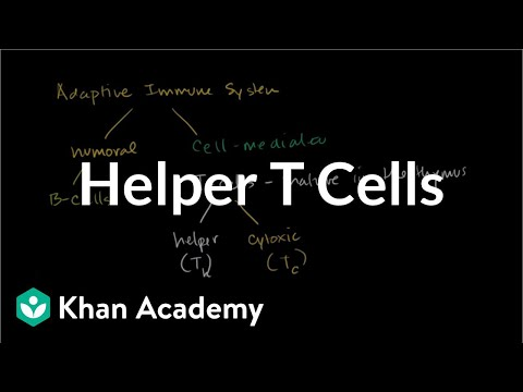 Helper T cells | Immune system physiology | NCLEX-RN | Khan Academy