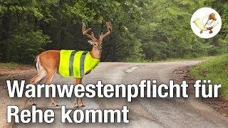 Verkehrsministerium beschließt Warnwestenpflicht für Rehe