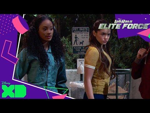 Lab Rats: Elite Force   The Superhero Hunt   Official Disney XD UK
