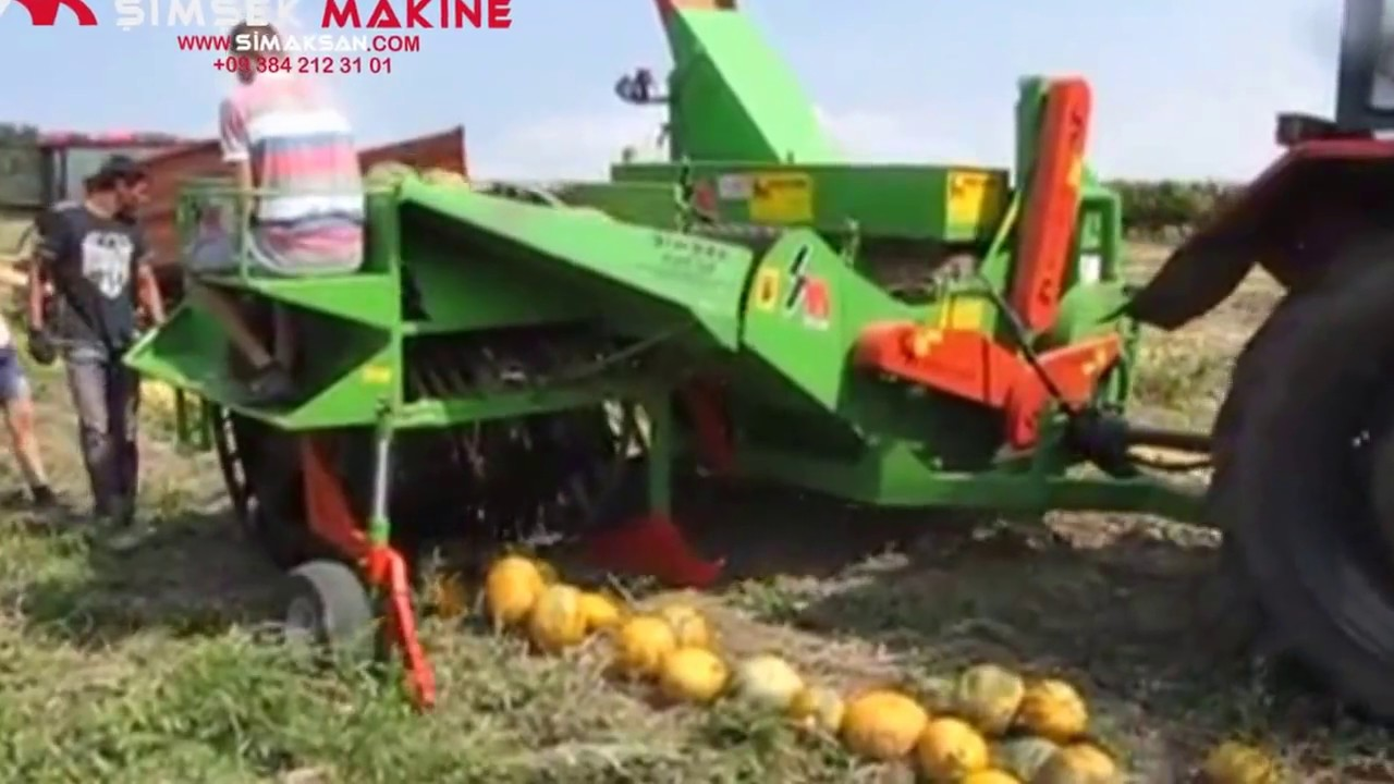 toplamali otomatik kabak hasat makinasi hungary2016 pumpking seed harveting