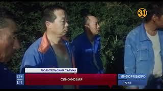 Жители Шымкента пытались выдворить из страны граждан Китая