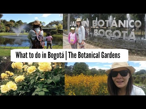 What to do in Bogotá - The Botanical Gardens