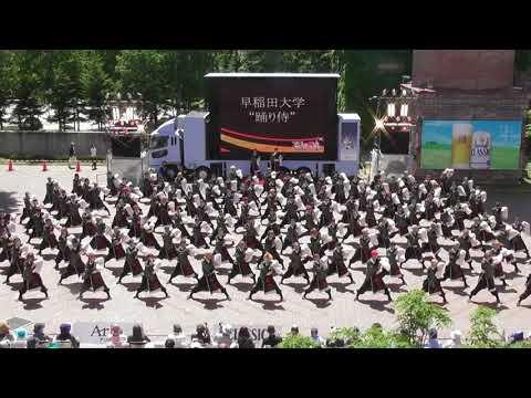"""「早稲田大学""""踊り侍""""」YOSAKOIソーラン祭り2019"""