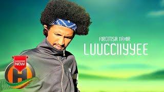 Firomsa Tahir - Luucciiyyee - New Ethiopian Music 2019 (Official video)
