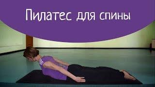 Пилатес для спины  Люблю фитнес