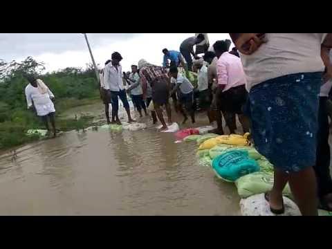 Floods At guntur district (Kakumanu)