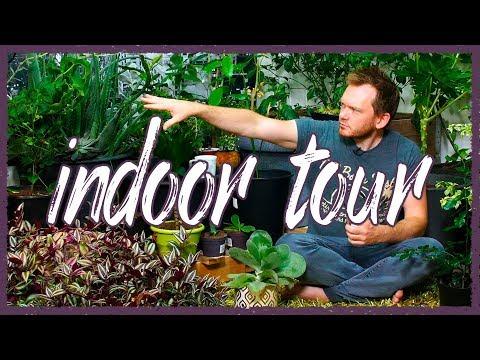 Indoor Garden Tour