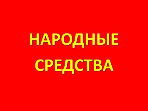 Чайный гриб купить в Москве c доставкой