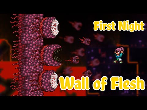 Terraria - Wall Of Flesh Kill On The First Night!