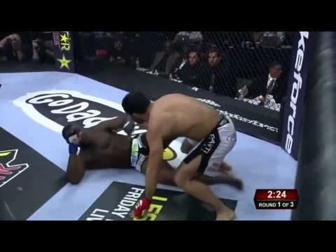 Gegard Mousasi Highlight 2016