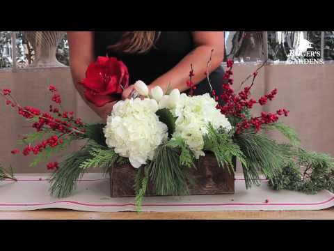 Christmas Floral Arranging with Alison Whiteman