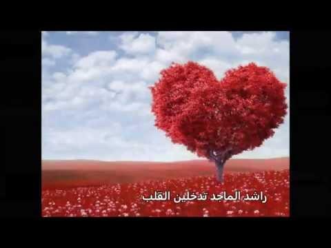 راشد الماجد تدخلين القلب 2013rashed al majed tadkhleen alkalbe