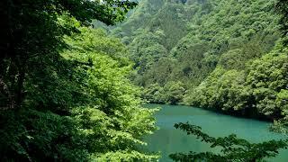 白丸湖 thumbnail