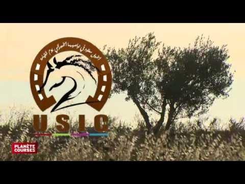 Planète courses -août 2016 – Tunisie, l'après révolution