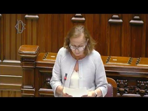 Question time alla Camera del ministro Lamorgese sulla strategia dell'accoglienza di migranti