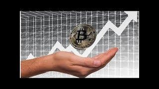 Bitcoin, Ethereum, Ripple, Bitcoin Cash, Litecoin, and Cardano rockets    NEWS TODAY
