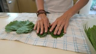 HOW TO PICKLE GRAPE LEAVES