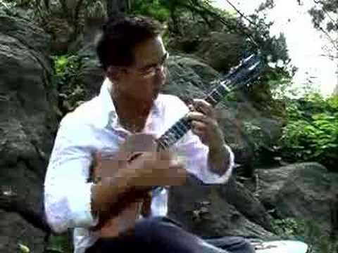 Amazinglly amazing ukulele playing