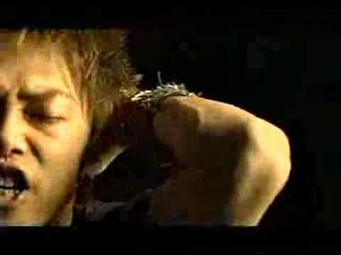 buzzlip wild rock saiyuki 最遊記 reload.