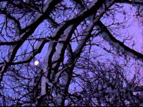 Crash Test Dummies - Winter Song - winter solstice images