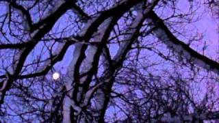 Crash Test Dummies - Winter Song - winter solstice images