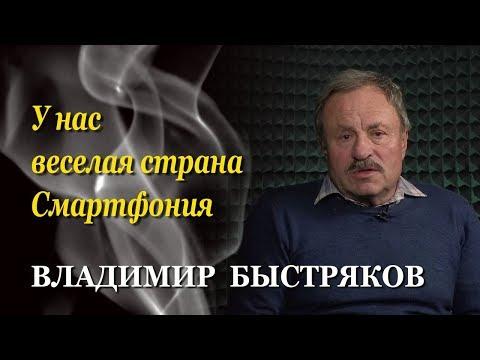 Владимир Быстряков. Зеленский