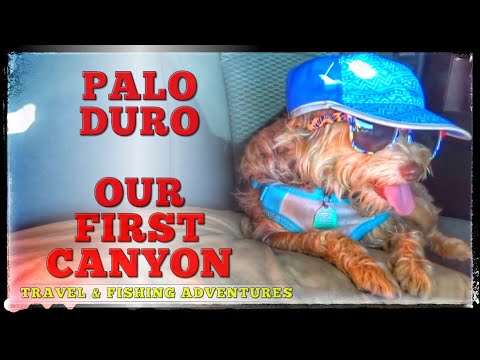 PALO DURO CANYON STATE PARK - WE SEE OUR FIRST CANYON (Grand Canyon VLOG 3)