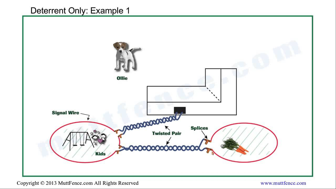InGround Dog Fence Deterrent Installation  YouTube