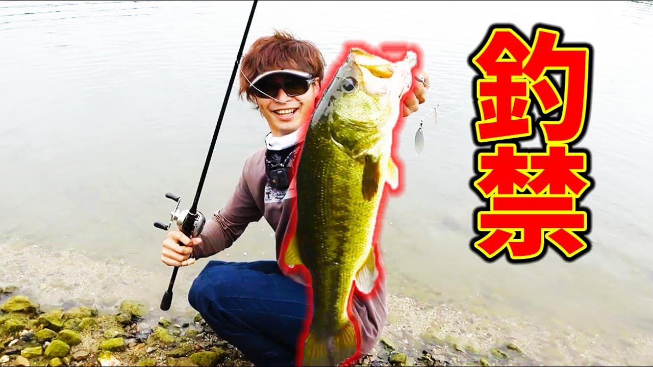 100年間誰も釣りしてない釣り禁止の池で釣りをしたら記録魚が!