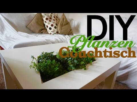 Do It Yourself Couchtisch Mit Pflanzen Youtube