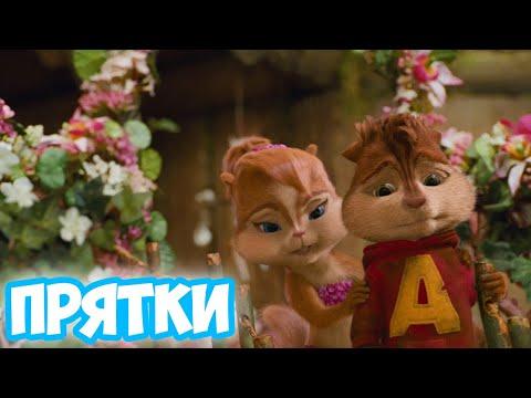 Элвин и Бурундуки поют Прятки (HammAli & Navai)