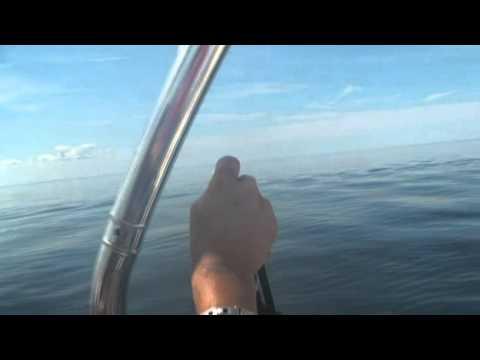 Le Requin Havre St-Pierre.dv.ff.mp4