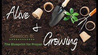 Alive & Growing Session 8 : The Blueprint For Prayer